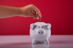 Child saving money royalty free stock photo