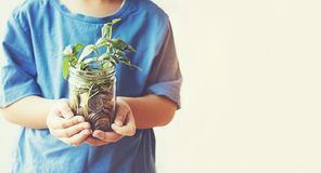 Child saving money in Bottle money growing up as tree stock photos