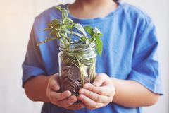 Child saving money in Bottle money growing up as tree. Coin Stock Images