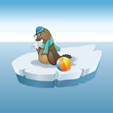 Child seals. And sick, iceberg Royalty Free Stock Image