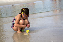 Child searching for shells at the beach. A young girl searches for shells in the surf at the beach stock photos