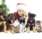 Child and set pets Stock Photography
