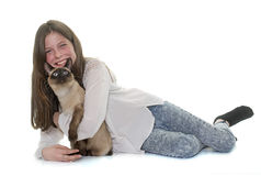 Child and siamese cat Stock Image