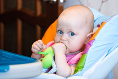 The child sits in a high chair and holding a toy in the mouth Stock Images