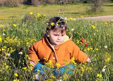 Child sits in a meadow Royalty Free Stock Images