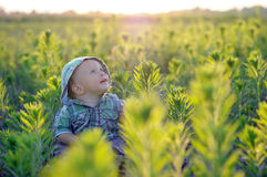 The child is sitting in the grass photo backlit. infant sits in the dense green thickets. Happy child Stock Image