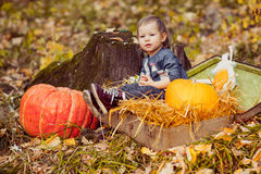 A child sitting on hay with pumpkins. Royalty Free Stock Image
