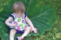 Child sitting on a large leaf Royalty Free Stock Images