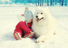 Child sitting with white Samoyed dog on snow in winter Stock Photography