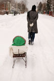 Child in sledge Stock Images