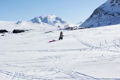 Child sledging on high mountain. In Norway Royalty Free Stock Photo