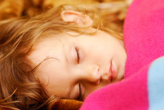 Child sleeps. The person of the little girl which sleeps on the bed, having taken cover a woollen blanket Stock Photos