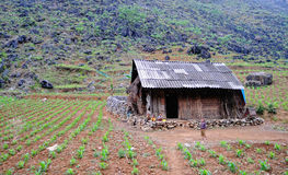 A child with small house at countryside in Hagiang, Vietnam Stock Image