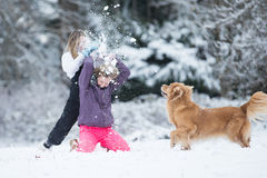 Child smashing snowball over another kids head during a white wi Royalty Free Stock Photos