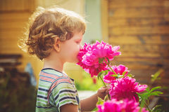 Child smelling bouquet of peonies, sun backlighting. Toning photo. stock photos