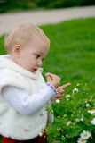Child smelling a camomile. Pretty child smelling a camomile on green grass background stock photography
