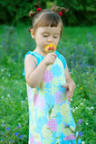 The child a smelling flower Stock Images
