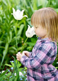 Child smelling flower Royalty Free Stock Image