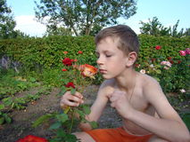 Child smelling a flower Royalty Free Stock Photo