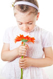 Child smelling a flower Royalty Free Stock Photos