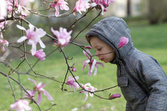 Child smelling a flower Stock Photo