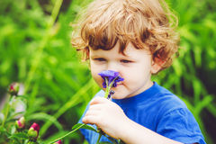 Child smelling flower. Toning photo. Royalty Free Stock Photo