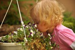 Child smelling flowers Stock Photography