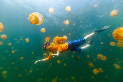 Child snorkeling in Jellyfish Lake royalty free stock photo