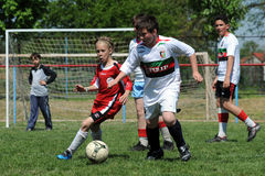 Child soccer festival Royalty Free Stock Image