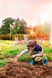 Child sowing vegetables in the home garden. Stock Photo