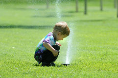 Child splaying with sprinkler. Young boy putting head in sprinkler water fountain on lawn stock image