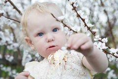 Child in spring Stock Photos