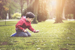Child  in spring. Boy sitting in the park in spring Stock Photography