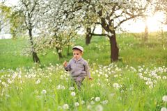 Child and Spring. Spring holidays concept. stock image