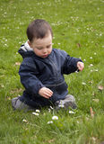 Child in spring grass Royalty Free Stock Photos