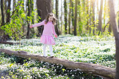Child in spring park with flowers. Cute little girl in pink dress playing in blooming spring park with first white wild anemone flowers. Child on Easter egg hunt Royalty Free Stock Image