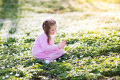 Child in spring park with flowers Stock Image
