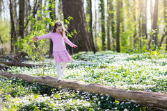Child in spring park with flowers. Cute little girl in pink dress playing in blooming spring park with first white wild anemone flowers. Child on Easter egg hunt Royalty Free Stock Images