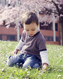 Child in spring park Stock Image