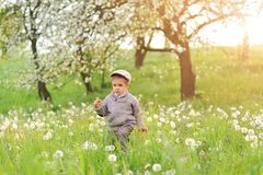 Child and Spring. Spring holidays concept. royalty free stock image
