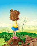 A child standing above the stump while sightseeing Stock Photography