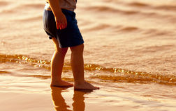 Child standing barefoot in the water Stock Photography