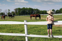 Child standing on the corral Royalty Free Stock Image