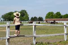 Child standing on corral and watching horses Royalty Free Stock Photography