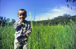 Child standing in grass Stock Photo