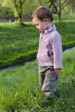 Child standing in grass. Child toddler standing in green grass by a small stream or brook in nature or park Stock Photography