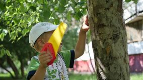 A child is standing in a park near a tree. Outdoor Games. The child stands in the Park near the tree stock video
