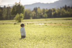 Child standing in waves of grain in field Stock Photography