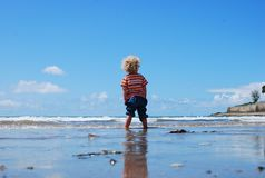Child Standing on Wet Beach Royalty Free Stock Photo