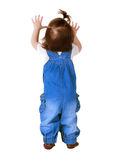Child stands, isolated on white. Back view Stock Photo